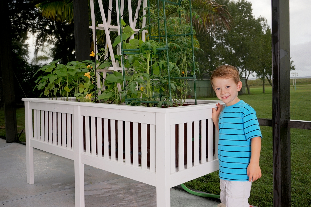 vegetable garden in orlando