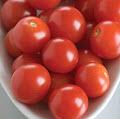 cherry tomatoes gardener